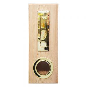 Tall Rectangular Brass Letterbox