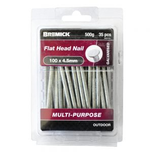 Galvanised Flat Head Nail 100 x 4.5mm 500g/35 Pack