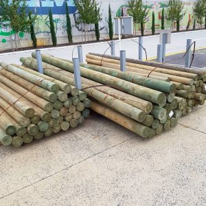 Treated Pine Pole 125 - 150 x 4.2